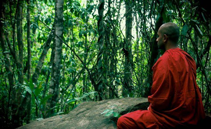 retreat retreatrejser meditationsrejser