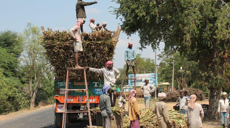 Indien bag kulissen
