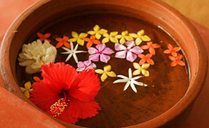 Flower Priyanka